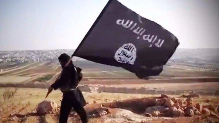 شیكهرهوهیهك: داعش نزیكهى 7 ههزار چهكدارى چالاكى له نێوان عیراق و سوریا ههیه